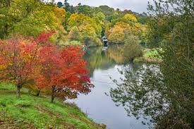 Winkworth Arboretum National Trust