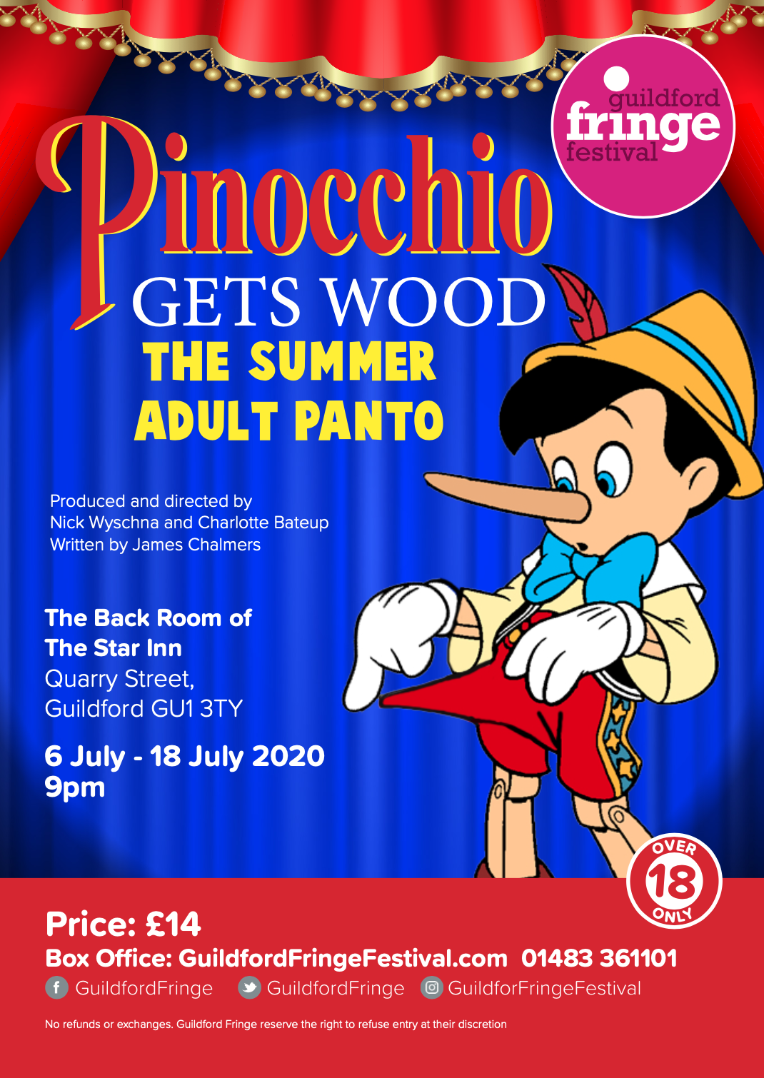Pinocchio Gets Wood the SUMMER Adult Panto